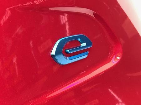 e208_emblem.JPG